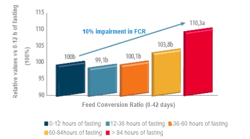 Effect of early fast on FCR