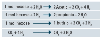 Fig 1_Stereochemical reactions