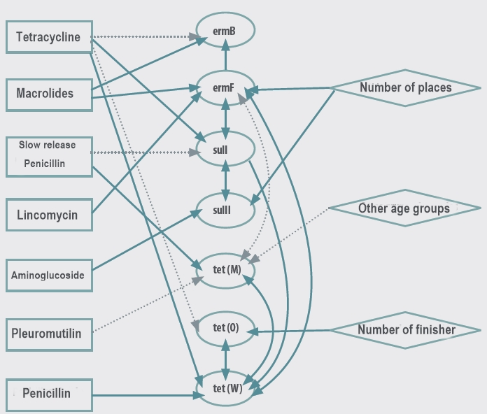 Relationship between exposure to ATBs and AMR_intestinal health and AMR